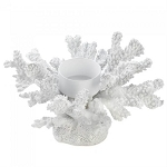 White Coral Candle Holder