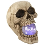 Skull Decor with Light-Up Glass Orb